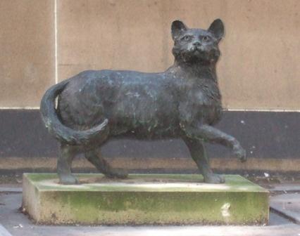 Flinder's cat Trim