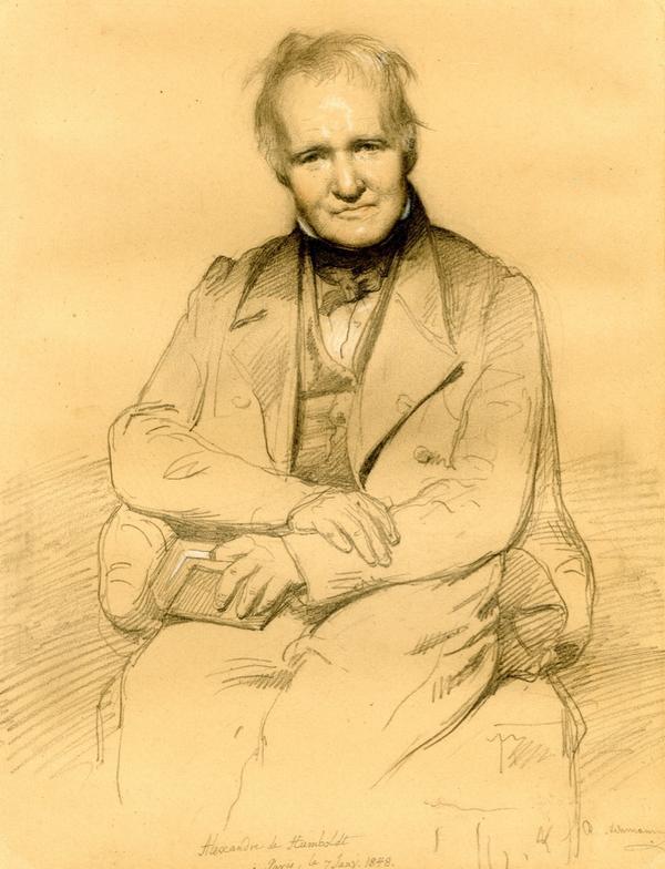 Alexander von Humboldt Drawn by Rudolf Lehmann