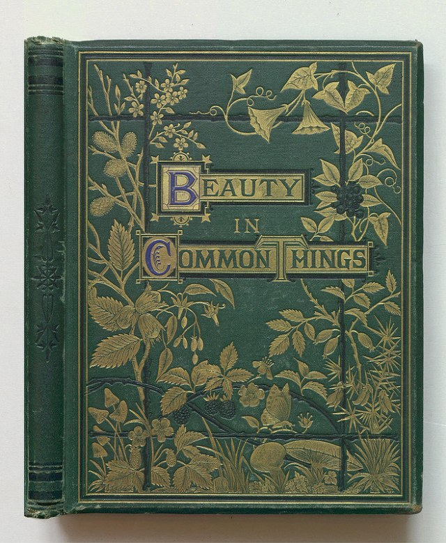 "A. C. Chambers, ""Beauty in Common Things"" (1874) (via Thomas Fisher Rare Book Library)"