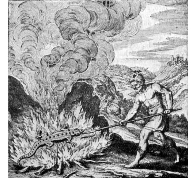 "A salamander relaxing in a fire, just minding its own business, is rudely prodded by a shirtless man. ""A salamander lives in the fire, which imparts to it a most glorious hue,"" reads the caption. Welcome to the wonderful world of alchemy. Wikimedia"