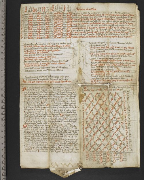 A page from a 15th century physician's folding almanac: London, British Library, MS Harley 3812, f.