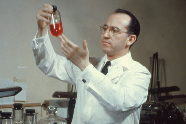Jonas Salk in his lab (Credit: Archive Photos/Getty Images)