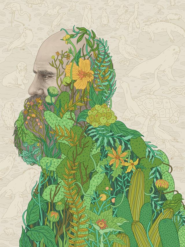 Darwin flowers