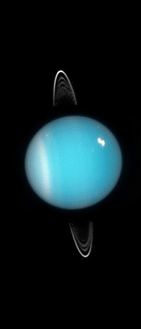 Uranus Rings (NASA/ESA/SETI Institute)