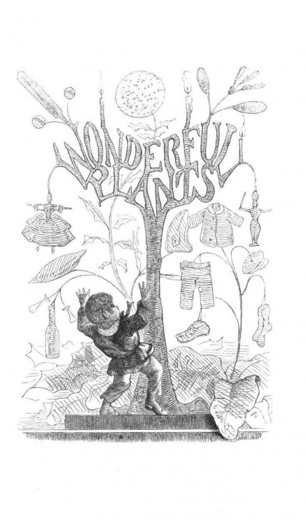 Charles Henry Bennett, 'Wonderful Plants', from John Cargill Brough, The Fairy-Tales of Science (1859). Public Domain via Wikimedia Commons. - See more at: http://blog.oup.com/2015/03/cinderella-science/?utm_source=twitter&utm_medium=oupacademic&utm_campaign=oupblog#sthash.7b01S79M.dpuf