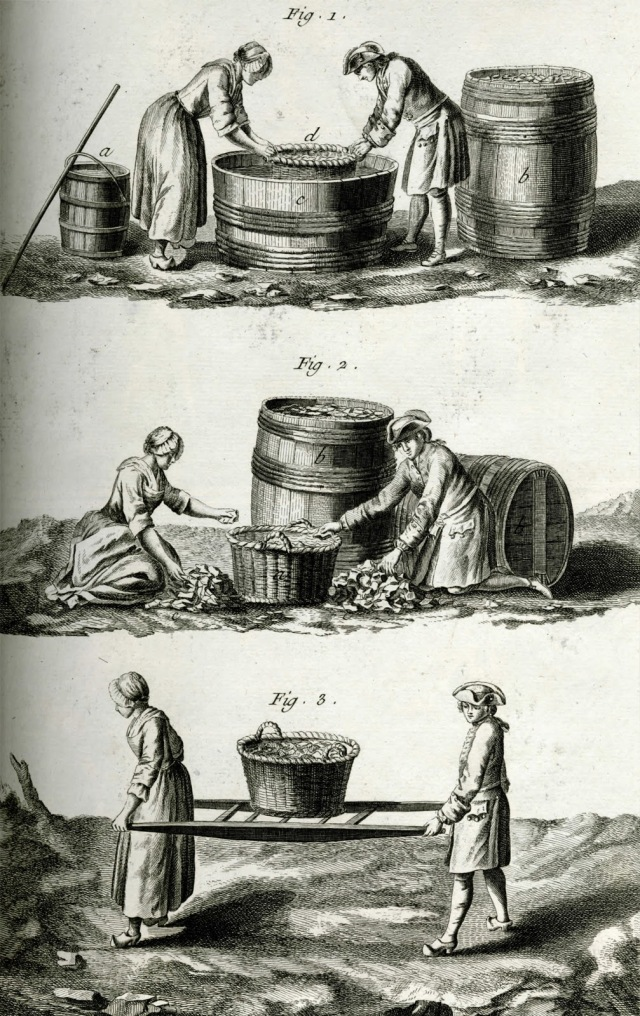 Washing, sorting and carrying cullet Denis Diderot 1772