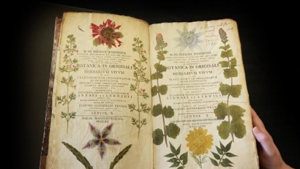 A rare 18th century book containing nature prints. Getty Images