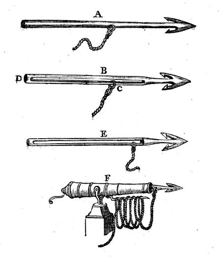 Abraham Staghold, a blacksmith, won a £20 premium from the Society of Arts in 1772 for a whale harpoon to be fired from a swivel gun