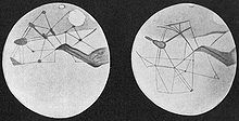 Martian channels depicted by Percival Lowell Source: Wikimedia Commons