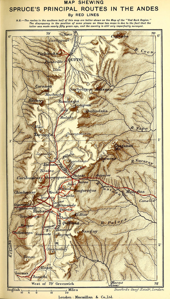 Map showing Spruce's route through the Andes from Notes of a Botanist on the Amazon and Andes (1908), edited by Alfred Russel Wallace – Source.