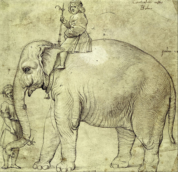 One of Raphael's sketches of Hanno (Image: Raphael/Wikimedia)