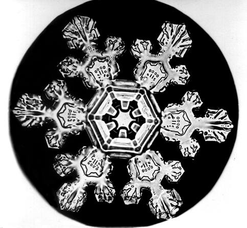 Bentley Snowflake