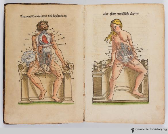 Plate 1 of Ryff's Des aller furtrefflichsten, hoechsten und adelichsten Gschoepffs aller Creaturen (1541).