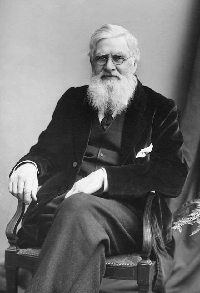 Alfred Russel Wallace ca. 1895 Source: Wikimedia Commons