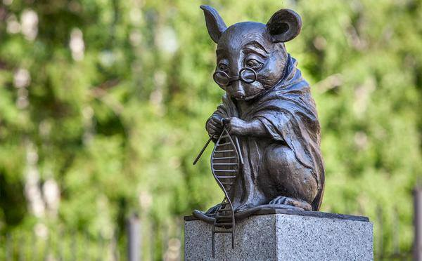 Tribute to lab research mice-A monument portraying a labmouse knitting a DNAhelix was unveiled in Novosibirsk Russia