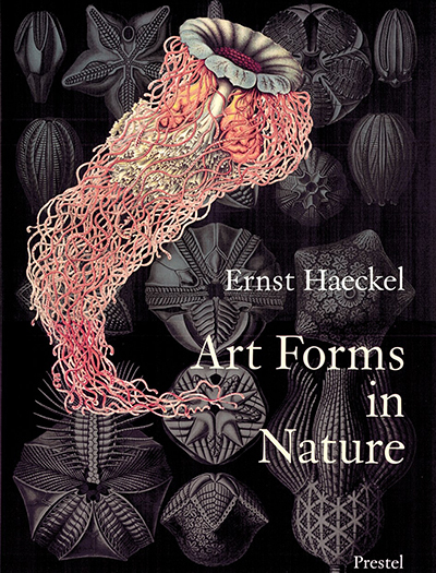 Art Forms in Nature von Olaf Breidbach