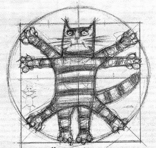 The Vitruvianische Katze Peter Glaser (@peterglaser)
