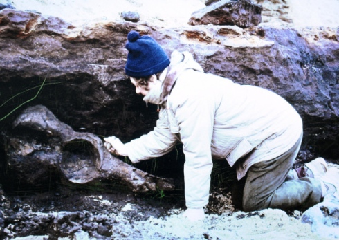 Margaret Hems, with the pelvis of the Steppe Mammoth that she discovered in the cliffs at West Runton, Norfolk, in 1992