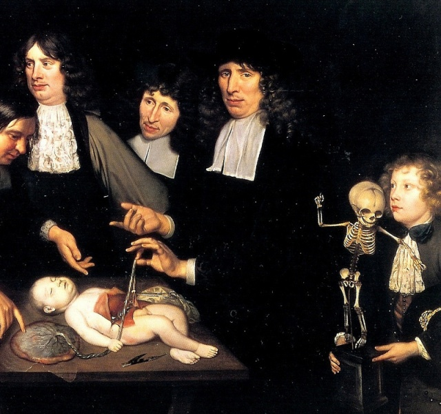 Detail from Jan van Neck's Anatomy Lesson of Dr. Frederick Ruysch (1683), showing Ruysch in the centre with an infant cadaver  Source: Wikimedia Commons