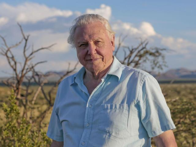 Sir David Attenborough BBC / Sophie Lanfear