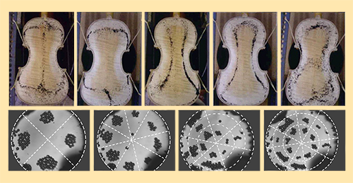 Figure 1: (Top) When dark particles are placed on the back of a violin vibrating on resonance, the particles move to the vibrational nodes. The resulting patterns, known as Chladni figures, depend on the vibrational frequency and provide a visual manifestation of each resonance. (Bottom) Poulain and colleagues [1] observed Chladni patterns when they placed microparticles within a liquid above a thin oscillating plate in a microfluidics device. Because of the fluid dynamics in their device, the particles were, unlike the particles on the violins, transported away from the nodes (dashed white lines) and towards the vibrational antinodes.