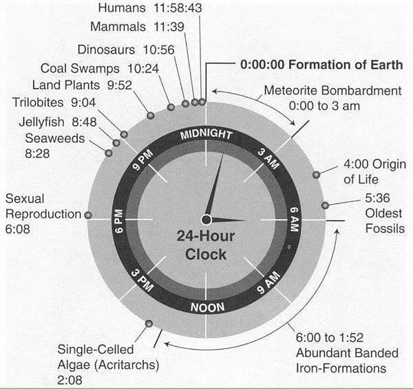 If the history of life on Earth was condensed into 24 hrs, this is what it would look like… Science Alert {@ScienceAlert)