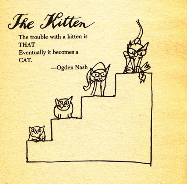 From 'A Cat-Hater's Handbook' by William Cole and Tomi Ungerer h/t @berfois