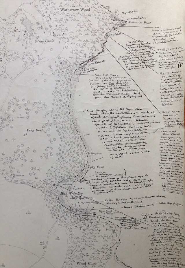 Fig. 1. 1913 map of the shore of Windermere with detailed annotation by H.P. Moon, 1950s?