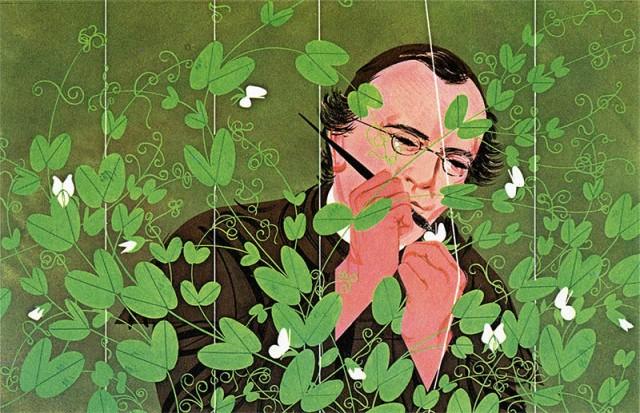 Gregor Mendel by Charley Harper