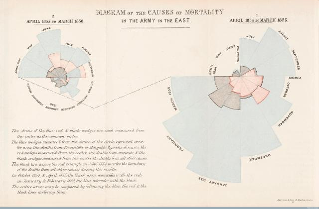 L0041105 Diagram of the causes of mortality in the army Credit: Wellcome Library, London.
