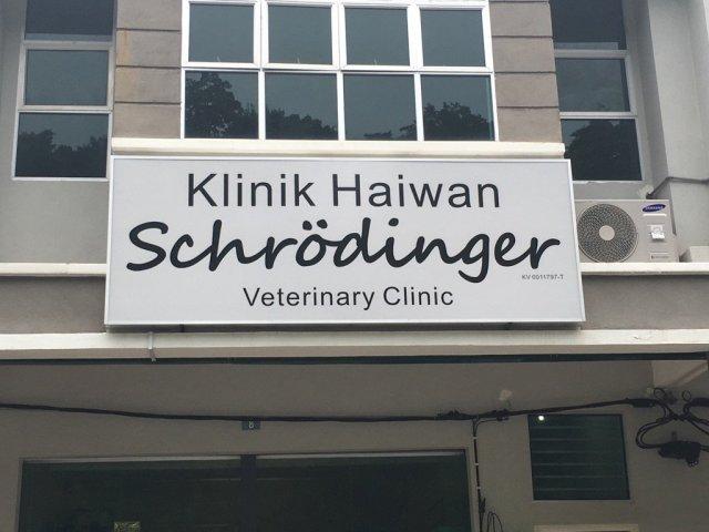 Schrödinger clinic