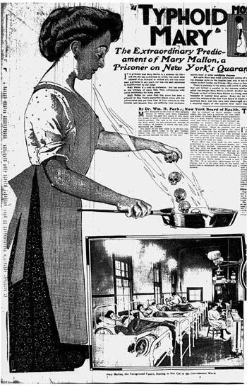Typhoid Mary in a 1909 newspaper illustration