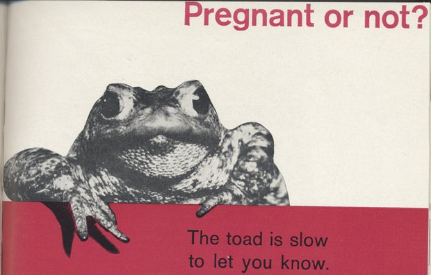 An advertisement for Primodos in The Practitioner from the early 1960s marketing campaign aimed at GPs that aggressively targeted the slower, more expensive toad test Photograph: Practitioner, vol 187 July 1961/The Practitioner, Practitioner Medical Publishing Ltd