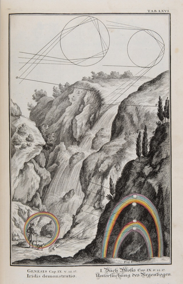 Plate LXVI from Johann Jakob Scheuchzer's Physica Sacra (1731) Source: Wikimedia Commons