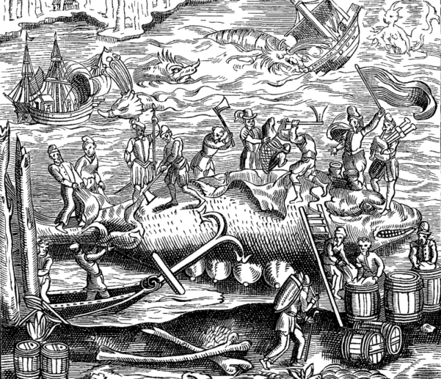 A woodcut illustration of whalers in the 1500s, surrounded by all sorts of strange creatures. COSMOGRAPHIE UNIVERSELLE/PUBLIC DOMAIN