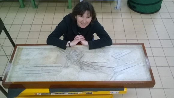 Dr Lorna Steel with a Rhamphorhynchus (pterosaur) fossil from Germany, which was purchased by the museum about ten years after Mary Anning died