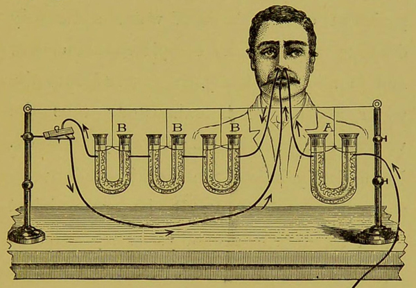 'On the Respiratory Functions of the Nose : and their relation to certain pathological conditions' by Greville Macdonald. Published 1889.