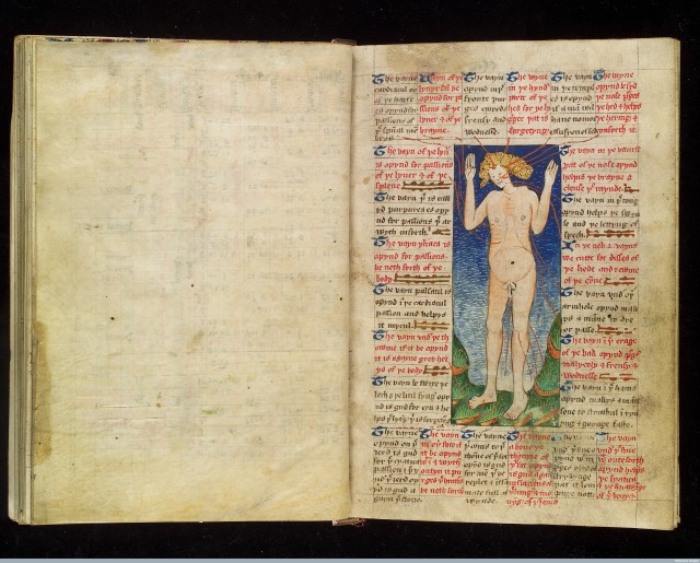 Phlebotomy Man, The Physician's Handbook: English medical and astrological compendium 1454, Credit: London, Wellcome Library, MS 8004, fol. 18r. License: CC BY 4.0.