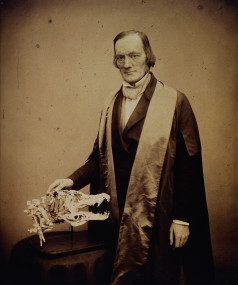 Sir Richard Owen. Photograph by Maull & Polyblank. Credit: Wellcome Library, London. Wellcome Images