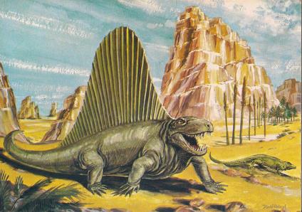 1dimetrodon