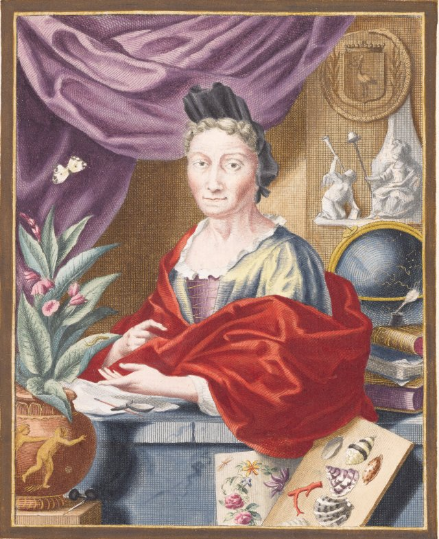 Maria Sibylla Merian, a German-born woman living in the Netherlands, had a successful career as an artist, botanist, naturalist and entomologist. CREDITJACOB HOUBRAKEN, AFTER GEORG GSELL, VIA METAMORPHOSIS INSECTORUM SURINAMENSIUM, AMSTERDAM 1705, THE HAGUE, NATIONAL LIBRARY OF THE NETHERLANDS
