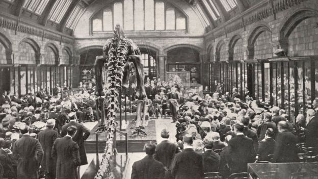 About 90 million people are estimated to have seen Dippy
