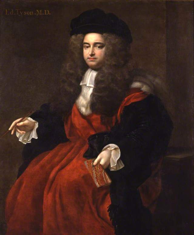 Edward Tyson Portrait by Edmund Lilly (c. 1695) Source: Wikimedia Commons