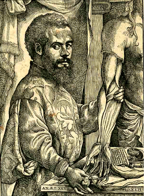Portrait of Vesalius from his De humani corporis fabrica. Source: Wikimedia Commons