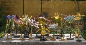 Brendel plant models. Image courtesy of Rosamond Purcell