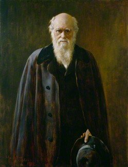 Portrait of Charles Darwin by Mabel Beatrice Messer 1912 After John Collier Source: Royal Society