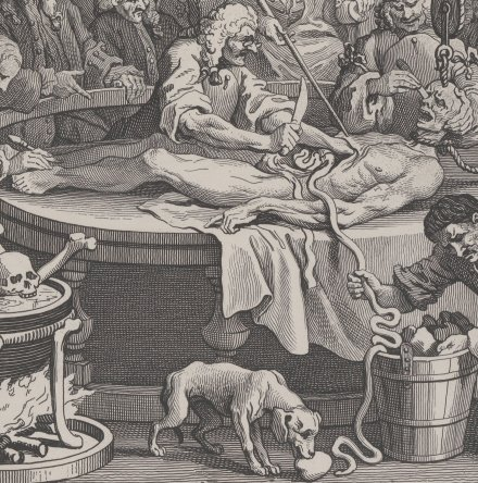 "James Field, hung 11 Feb 1751, was the model Hogarth used for anatomized criminal in ""Reward of Cruelty"""