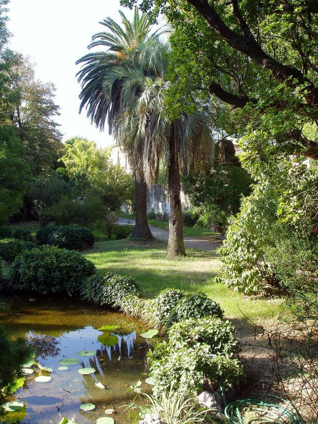 Orto botanico di Pisa operated by the University of Pisa: The first botanic garden, established in 1544 under botanist Luca Ghini, it was relocated in 1563 and again in 1591 Source: Wikimedia Commons